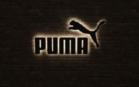 Puma здивувала світ кросівками із вбудованим комп'ютером