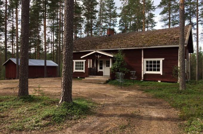 У Фінляндії розшукують 37 збирачів ягід зУкраїни