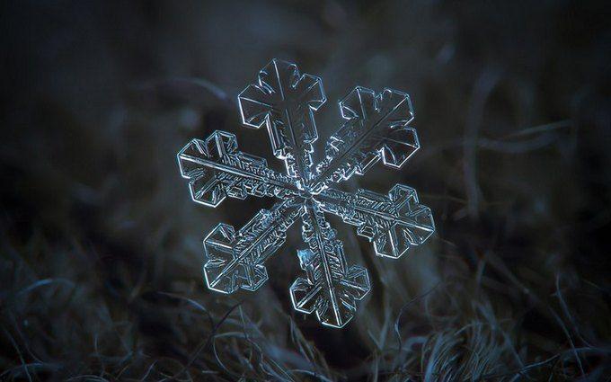 На Прикарпатті випав перший сніг: з'явилися яскраві фото і відео