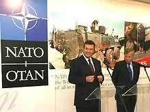Партия регионов поддержит НАТО в обмен на создание коалиции