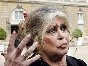 Бриджит Бардо заплатит 15 тысяч евро за оскорбления мусульман