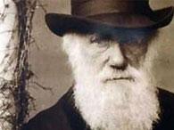 Дарвин украл теорию эволюции