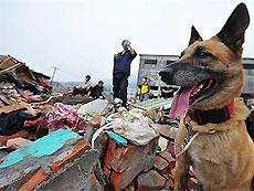 Количество погибших при землетрясении в Китае превысило 65 тысяч человек