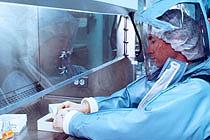 В Испании подтвержден первый в Европе случай свиного гриппа
