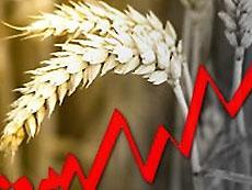 Мировые цены на продукты поставили полувековой рекорд