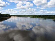 В День Конституции в Украине будет тепло и дождливо