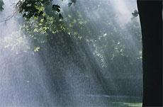 В ближайшие дни будет жарко и немножко дождливо