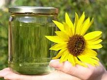 ЕС ввел новую норму обязательной доли биотоплива