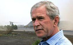 """""""Аль-Каида"""" призывает убить Буша во время его ближневосточного турне"""