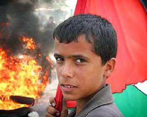 СБ ООН призвал срочно создать палестинское государство