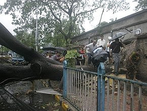 Число жертв урагана в Индии и Бангладеш превысило 200 человек