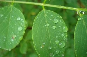 Во вторник в Украине до +28, местами дожди
