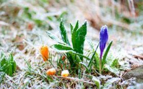 Синоптики предупредили украинцев о заморозках и рассказали, когда вернется тепло