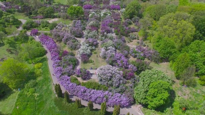 Клиника похудения на ботаническом саду