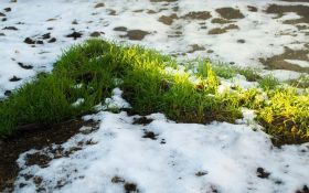 В Украине в разгар лета снова выпал снег - зрелищные фото и видео