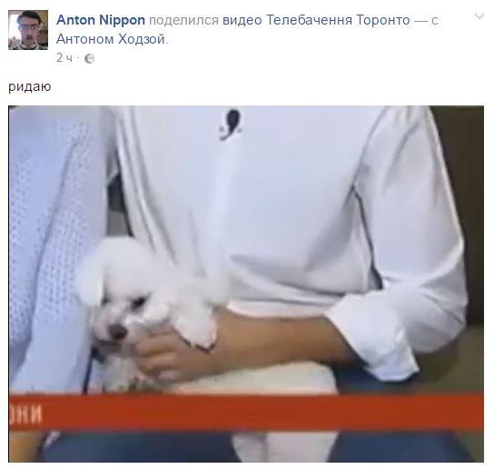 Квартирний скандал Лещенка: соцмережі підірвало смішне відео з собакою нардепа (1)
