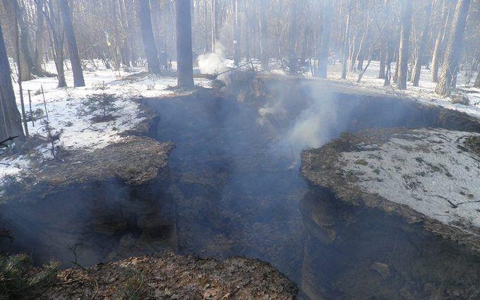 Под Львовом сожгли музей УПА: опубликованы фото