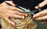 У Києві жінка забила до смерті перукаря через погану зачіску свого чоловіка