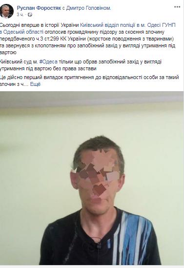 Издевательство над животными: впервые в Украине суд вынес резонансное решение (1)