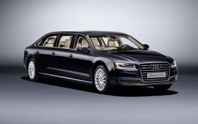 Audi создала уникальный 6-дверный автомобиль: опубликовано фото