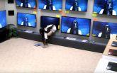 Ожившая девочка из знаменитого ужастика стала хитом сети: появилось яркое видео
