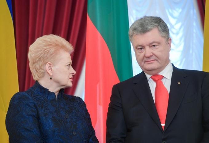 """""""Ми отримуємо персональні погрози від Кремля"""": Грибаускайте шокувала неочікуваним зізнанням (2)"""