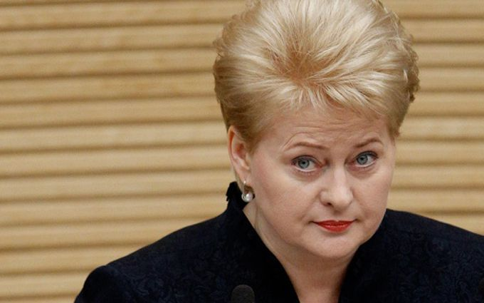 Президент Литви яскраво привітала Україну з Днем Незалежності: опубліковано відео