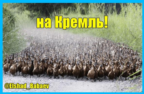 В соцсетях высмеяли вылет России с Евро-2016: опубликованы фотожабы (1)