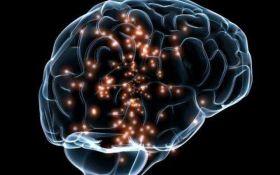 Ученые нашли возможную причину рассеянного склероза и способы борьбы с ним