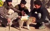 ИГИЛ шокировал новаторской идеей насчет смертников: опубликовано видео