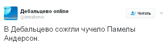 """На Донбасі спалили """"опудало Памели Андерсон"""": з'явилися кумедні фото (1)"""