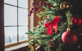 Погода на Рождество: появился прогноз синоптика