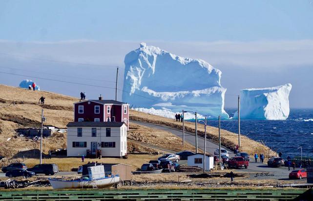 """В Канаде сотни туристов едут посмотреть на """"Аллею айсбергов"""": появились впечатляющие фото (1)"""
