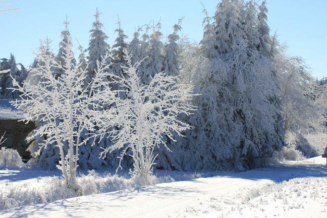 Погода на завтра, 26 января