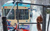 Київ засипало снігом: користувачі мережі публікують яскраві фото