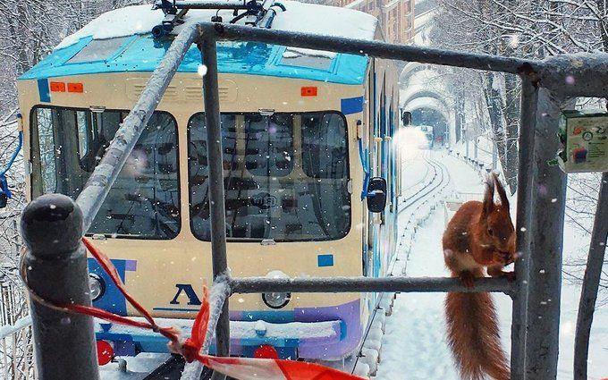 Киев засыпало снегом: пользователи сети публикуют яркие фото