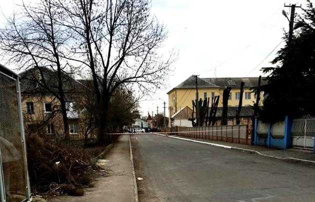 В Мукачево посреди бела дня на улице произошла перестрелка: опубликованы фото и видео (1)