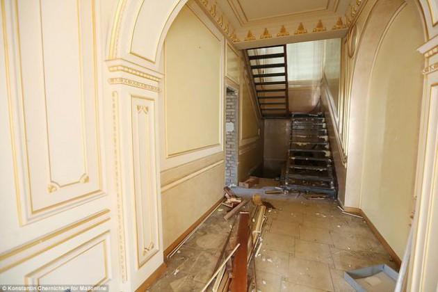 На Западе появились впечатляющие фото разграбленного дворца Пшонки (10)