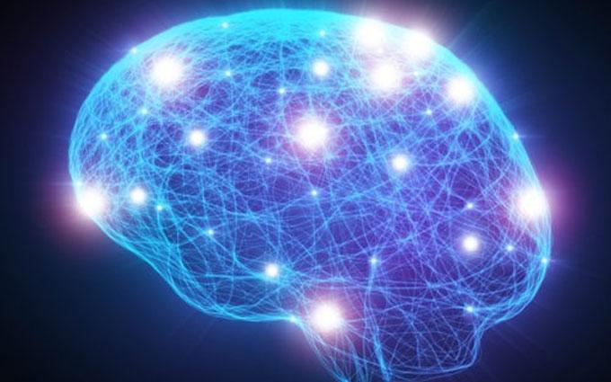 Ученые создали 3D-карту нейронов головного мозга: опубликовано фото