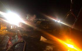 На Філіппінах вибухнув літак з медиками на борту, всі загинули: моторошні фото і відео трагедії