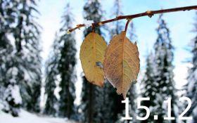Прогноз погоды в Украине на 15 декабря