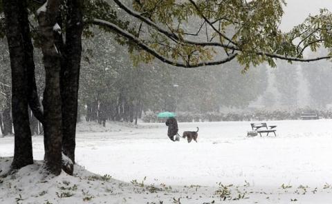Через сильний снігопад у Польщі загинули двоє осіб (6 фото) (2)
