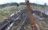 У Канаді мисливець спробував захиститися від нападу ведмедя луком та стрілами: опубліковано відео
