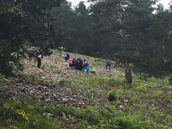 У Туреччині сталася гучна авіакатастрофа: з'явилися фото (1)