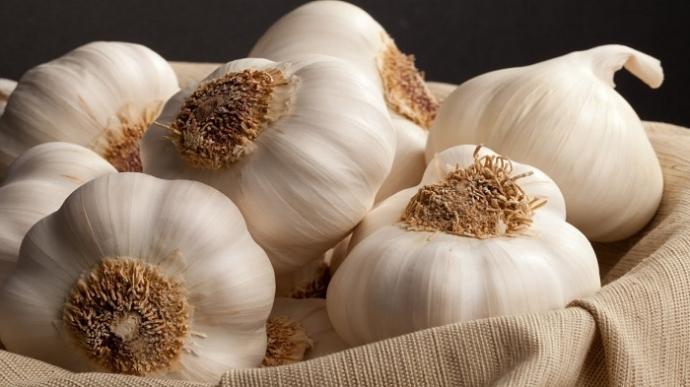 Сырой чеснок предотвращает риск развития рака легких