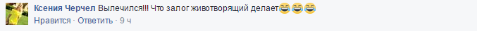Зачем этот цирк? Соцсети продолжают кипеть из-за освобождения Насирова (2)