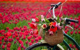 Смс поздравления с майскими праздниками в прозе и стихах