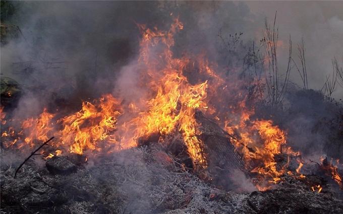 Пожежа на полігоні в Чернігівській області: військові прояснили ситуацію