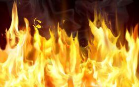 В оккупированном Симферополе вспыхнул мощный пожар: появилось видео