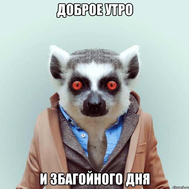 В соцсетях высмеяли вылет России с Евро-2016: опубликованы фотожабы (18)